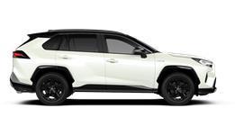 Hybrid Style 5-door