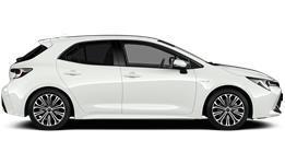 Hybrid Style Sport Black Hatchback